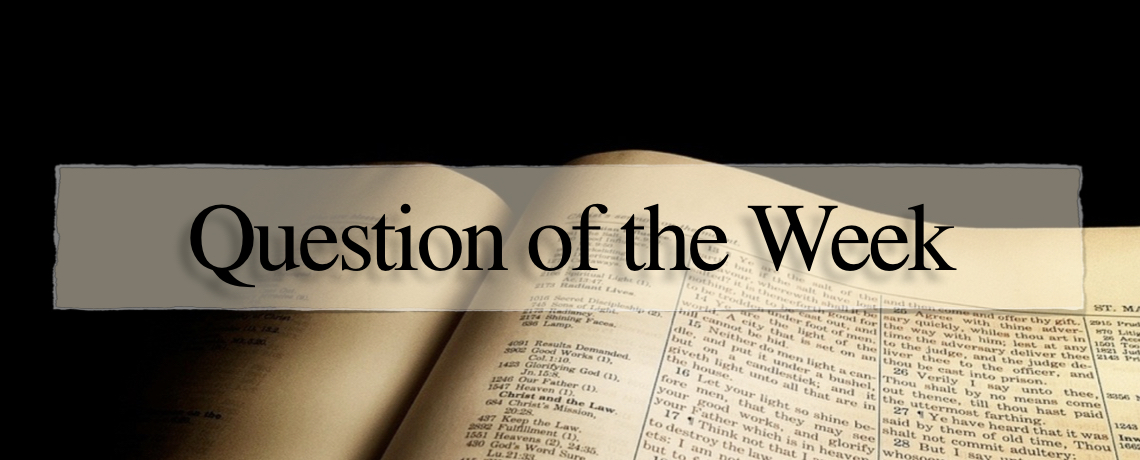 A Reason for Hope Question of the Week, January 18th, 2019